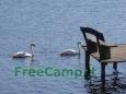 Ekologiskas_Poilsis_FreeCamp.lt_7