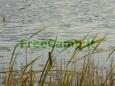 Ekologiskas_Poilsis_FreeCamp.lt_8